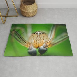 Oxyopes M Rug