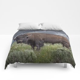 American Buffalo Bison in Yellowstone National Park Comforters