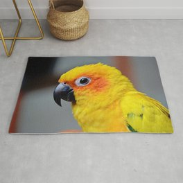 Vibrant Package Rug
