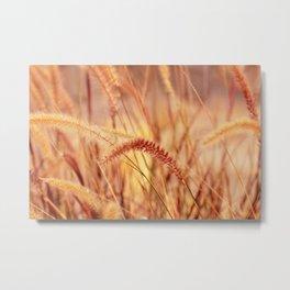 Grass 0101 Metal Print
