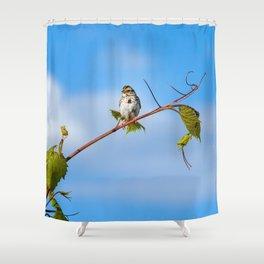 Swinging on a Vine Shower Curtain