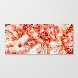 cinnamon Canvas Print
