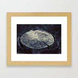 Wooden Stump Framed Art Print