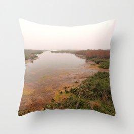 Misty Assateague Island Marsh Throw Pillow