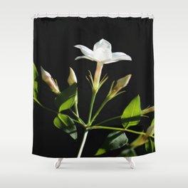 Close Up Of Jasminum Officinale Shower Curtain