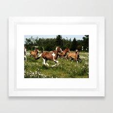 Spring Horse Run Framed Art Print