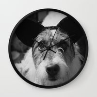 jack russell Wall Clocks featuring Jack Russell by Arianne Kenworthy Photography