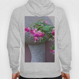 Fuchsia Hoody
