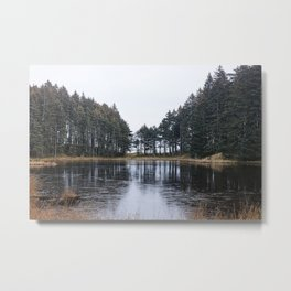 Tree Lined Lake Photography Print Metal Print