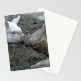 Piggy Love Stationery Cards