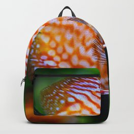 Discusfish Backpack