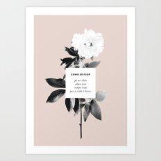 Como Se Flor Art Print