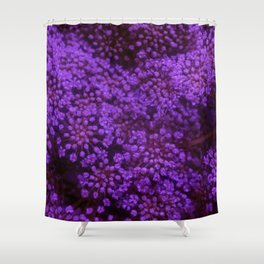 Purple Queen Anne's Lace Landscape Shower Curtain