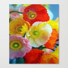 COLORFUL POPPIES Canvas Print