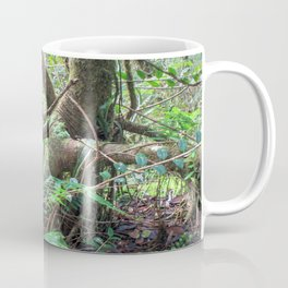 Dancing trees in the cloud forest  -  Tradewinds trail El Yunque rainforest PR Coffee Mug