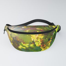 Wine Grapes in the Sun Fanny Pack