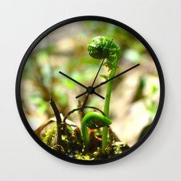 Michigan Fiddle Heads Wall Clock
