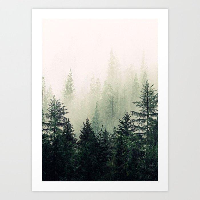 Foggy Pine Trees Kunstdrucke