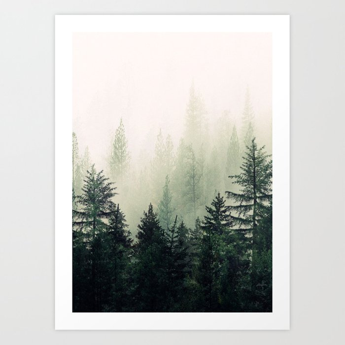 Discover the motif FOGGY PINE TREES by Andreas12 as a print at TOPPOSTER