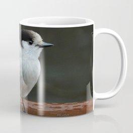 Gray Jay Coffee Mug