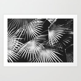 Tropical #5 Art Print