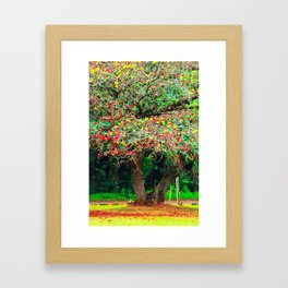 big tree with green yellow and red leaves Framed Art Print
