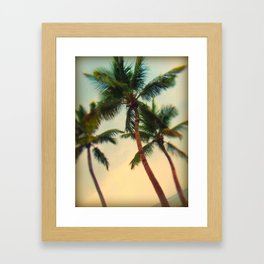 Key West Palms Framed Art Print