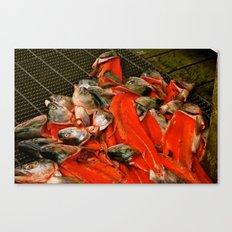 Fish heads Canvas Print