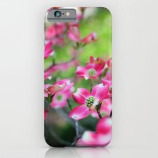 Pink Dogwood in the Spring Slim Case iPhone 6s