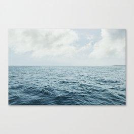 Vitamin Sea by Audrey Amelie Canvas Print