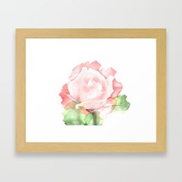 Watercolor rose Framed Art Print