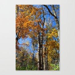 Fall Nips Canvas Print