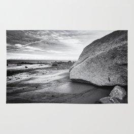 Kenai Beach bw Rug