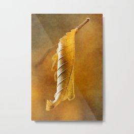 Autumn #4 Metal Print