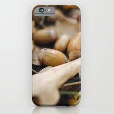 Acorns iPhone 6s Slim Case