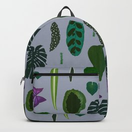 A non-scientific botanical investigation of the indoor plant. Backpack