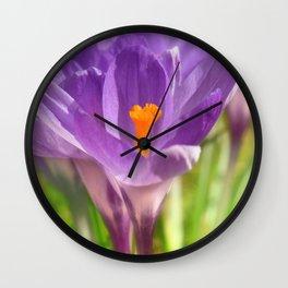 Purple Crocus 229 Wall Clock