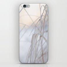 Beautiful Winter Morning iPhone & iPod Skin