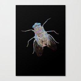 Animal Slang - Fly Canvas Print