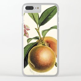 A peach plant - vintage illustration Clear iPhone Case
