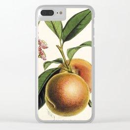 A peach plant - vintage illustration Clear iPhone Case