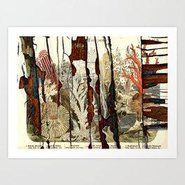 Peeling Naturalist Print 2 Art Print