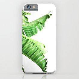 Banana Tree Palm Leaf iPhone Case