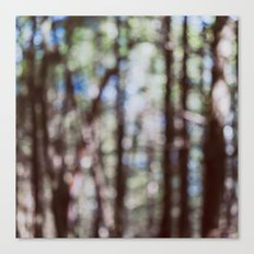 Mystify - Abstract Forest Landscape Canvas Print