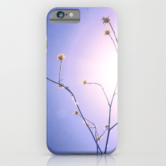 Delicate Things iPhone & iPod Case