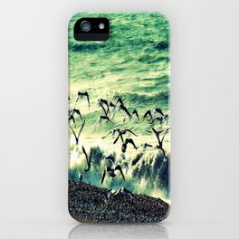 seagulls in the storm iPhone Case