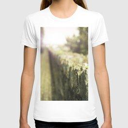 A Walk In The Garden T-shirt