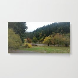 Autumn Leaves and White Fences Metal Print