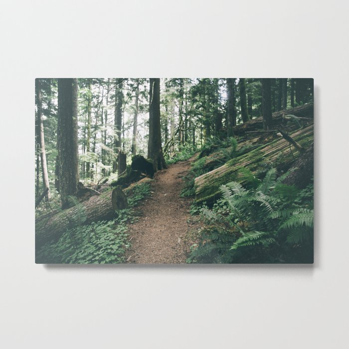 Happy Trails XI Metal Print