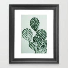 Green Bunny Ears Cactus  Framed Art Print